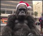 santa_gorilla_t